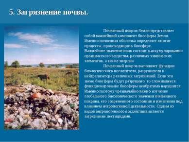 5. Загрязнение почвы. Почвенный покров Земли представляет собой важнейший ком...