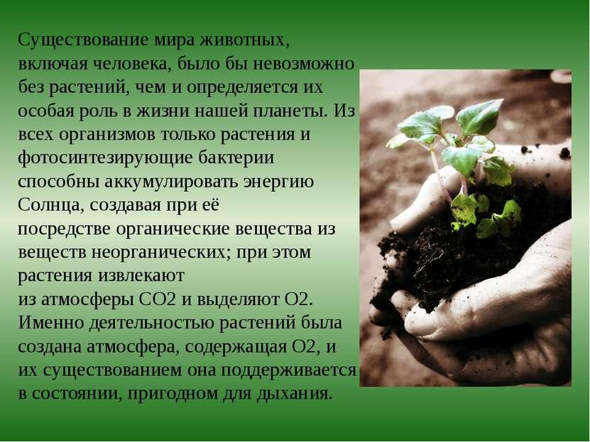 План почему без растений невозможна жизнь на земле 3 класс