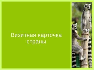 Визитная карточка страны Органы власти Парламентская республика, президент - ...