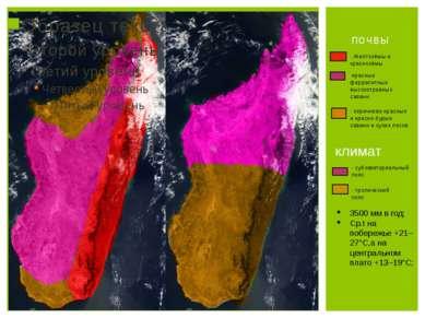 почвы - Желтозёмы и краснозёмы -красные феррапитные высокотравных саванн - ко...