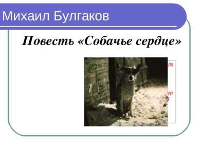 Михаил Булгаков Повесть «Собачье сердце»