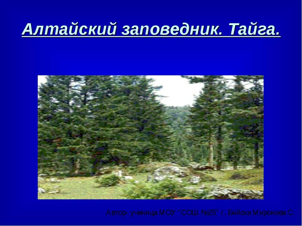 Алтайский заповедник. Тайга.