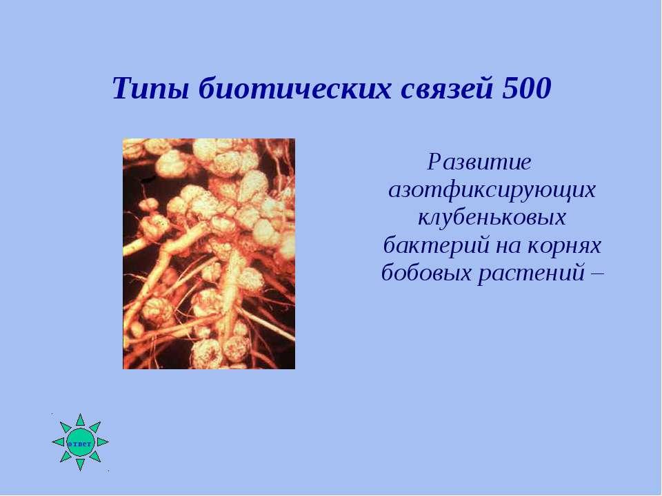 Типы биотических связей 500 Развитие азотфиксирующих клубеньковых бактерий на...