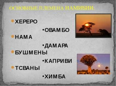 ОСНОВНЫЕ ПЛЕМЕНА НАМИБИИ: ХЕРЕРО ОВАМБО НАМА ДАМАРА БУШМЕНЫ КАПРИВИ ТСВАНЫ ХИМБА