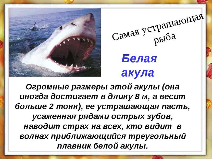Огромные размеры этой акулы (она иногда достигает в длину 8 м, а весит больше...