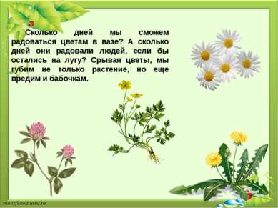 Сколько дней мы сможем радоваться цветам в вазе? А сколько дней они радовали ...