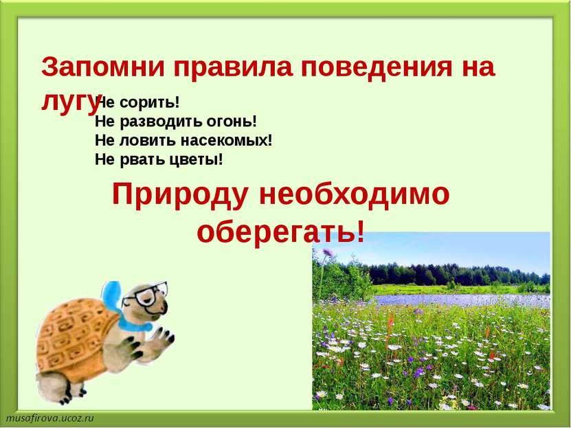 Не сорить! Не разводить огонь! Не ловить насекомых! Не рвать цветы! Запомни п...