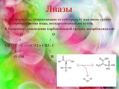 Лиазы Это ферменты, отщепляющие от субстрата ту или иную группу без присоедин...