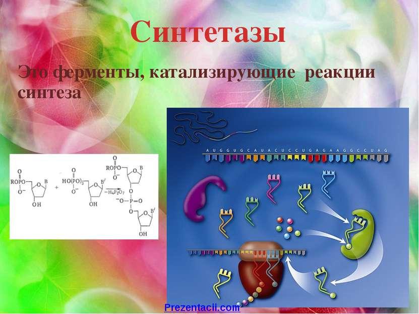 Синтетазы Это ферменты, катализирующие реакции синтеза Prezentacii.com