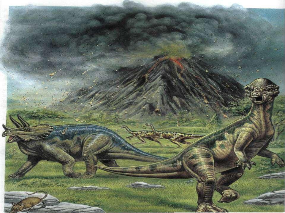 Более 100 млн лет назад жили в древних реках, озёрах и болотах брахиозавры