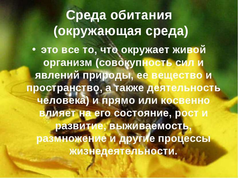 Среда обитания (окружающая среда) это все то, что окружает живой организм (со...