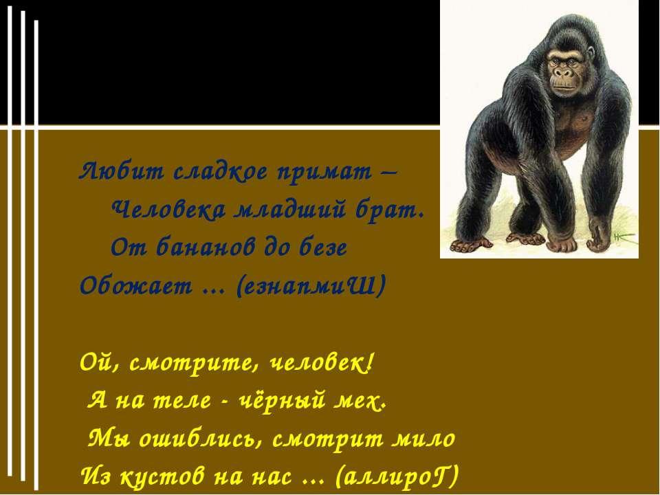 Любит сладкое примат – Любит сладкое примат – Человека младший брат. От банан...
