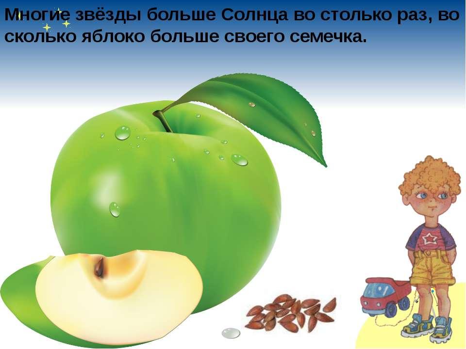 Многие звёзды больше Солнца во столько раз, во сколько яблоко больше своего с...
