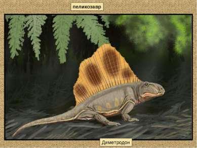 пеликозавр Диметродон