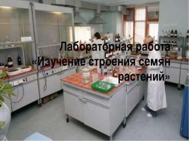 Лабораторная работа «Изучение строения семян растений»