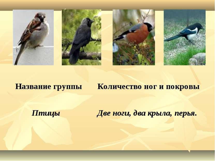Название группы Количество ног и покровы Птицы Две ноги, два крыла, перья.