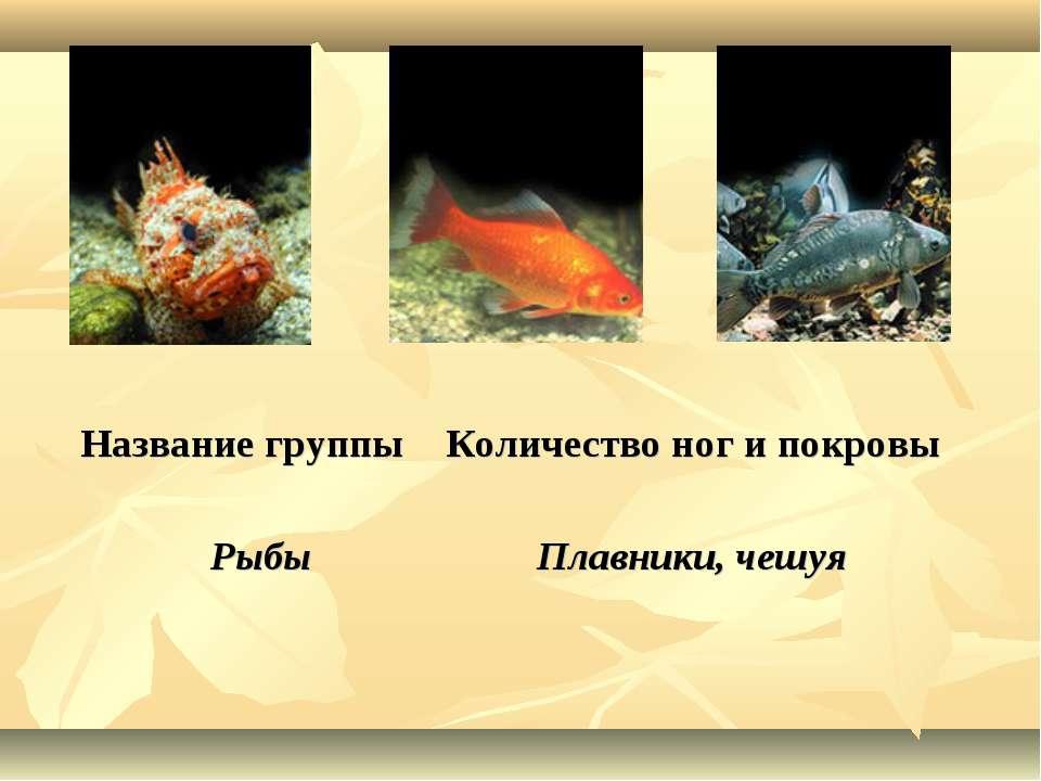 Название группы Количество ног и покровы Рыбы Плавники, чешуя