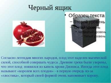 Черный ящик Согласно легендам многих народов, плод этот наделен магической си...