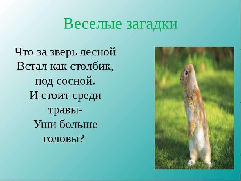 Веселые загадки Что за зверь лесной Встал как столбик, под сосной. И стоит ср...