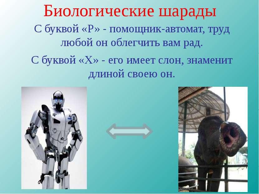Биологические шарады С буквой «Р» - помощник-автомат, труд любой он облегчить...