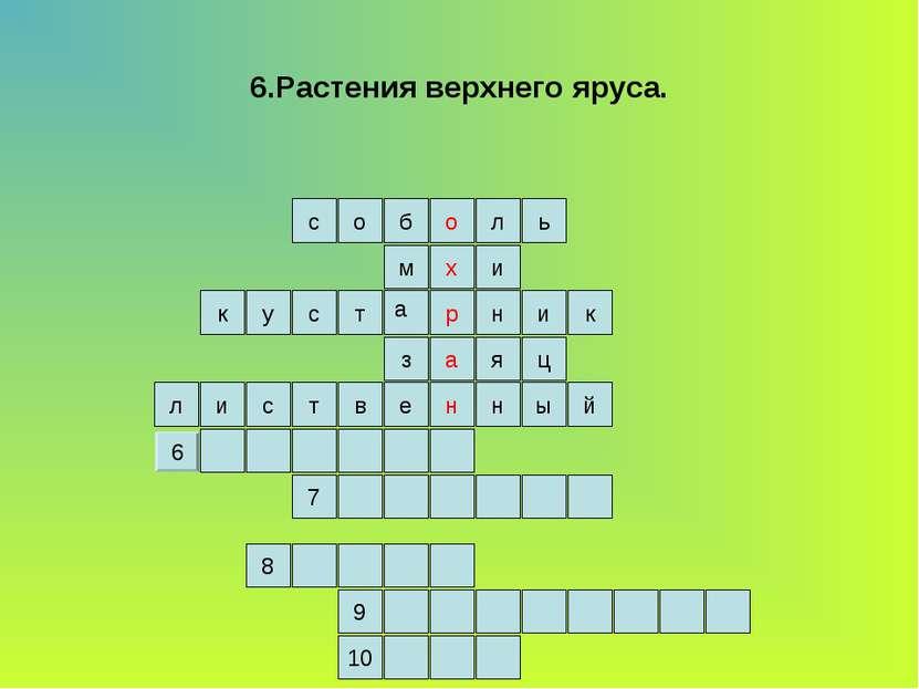 6.Растения верхнего яруса. ь л о б о с и м н а р х е к ц я з к у и н с т й л ...