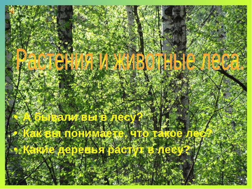 А бывали вы в лесу? Как вы понимаете, что такое лес? Какие деревья растут в л...