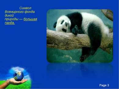 Символ Всемирного фонда дикой природы—большая панда. Free Powerpoint Templa...