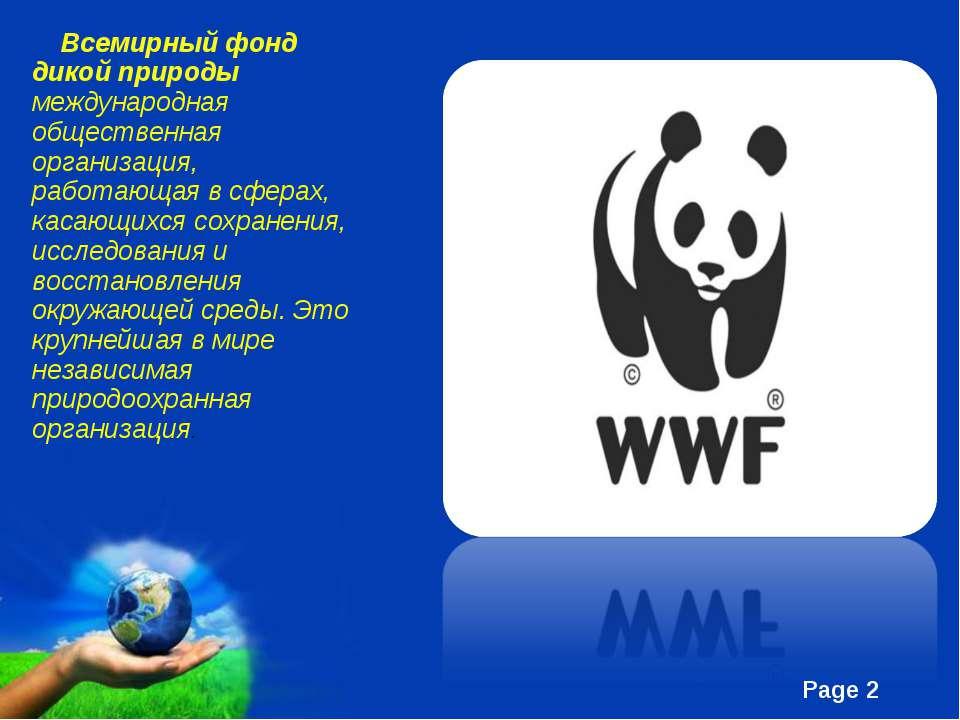Всемирный фонд дикой природы международная общественная организация, работаю...