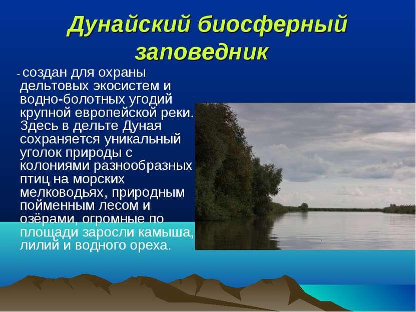 Дунайский биосферный заповедник - создан для охраны дельтовых экосистем и во...