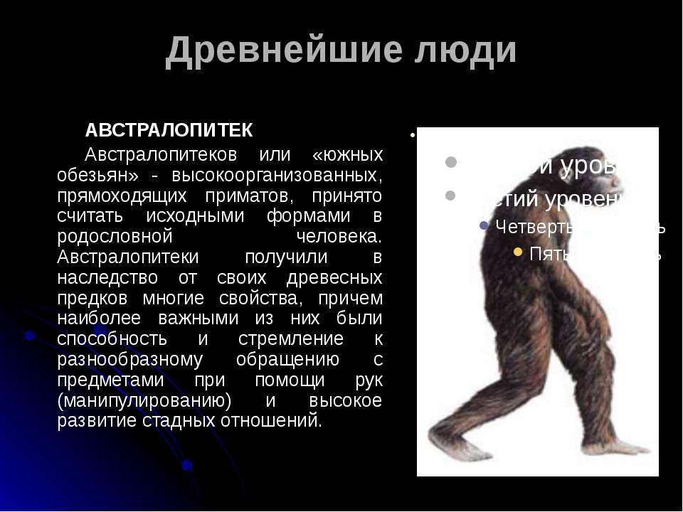 Древнейшие люди АВСТРАЛОПИТЕК Австралопитеков или «южных обезьян» - высокоорг...