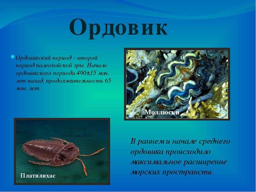 Ордовикский период – второй период палеозойской эры. Начало ордовикского пери...