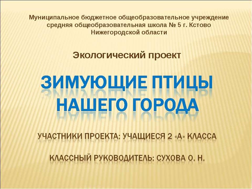 Экологический проект Муниципальное бюджетное общеобразовательное учреждение с...