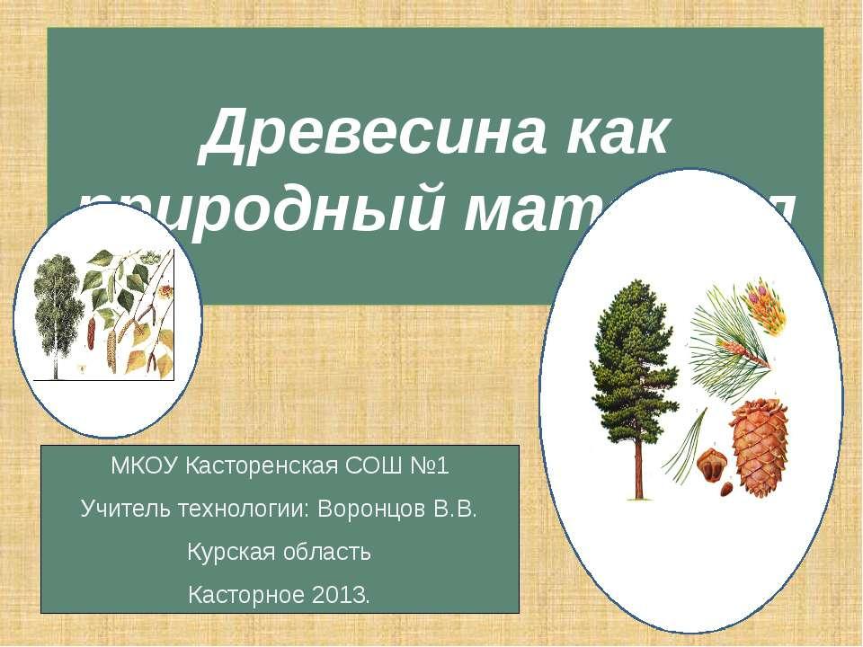 Древесина как природный материал МКОУ Касторенская СОШ №1 Учитель технологии:...