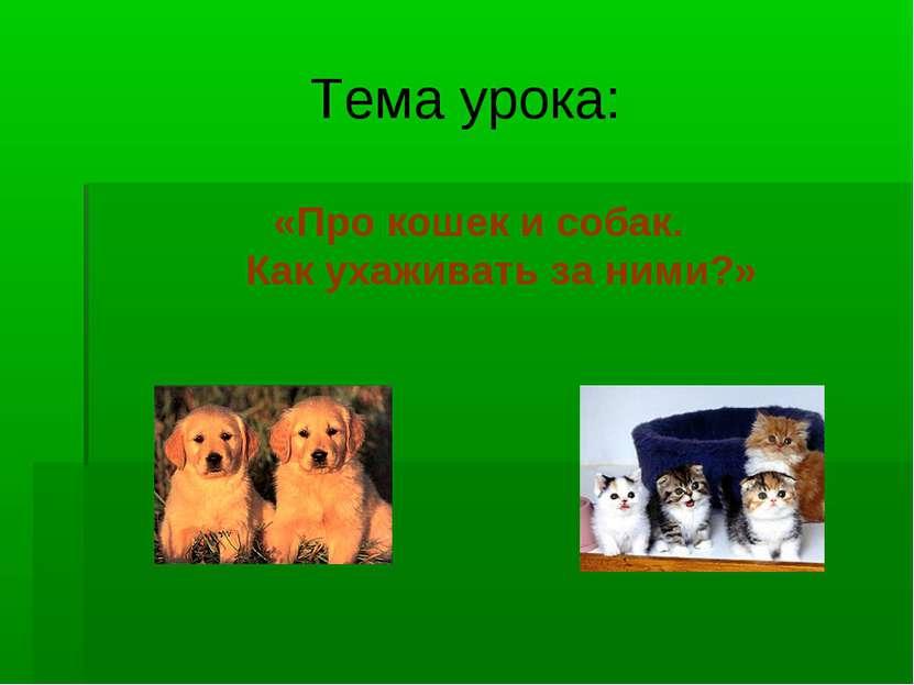 Тема урока: «Про кошек и собак. Как ухаживать за ними?»