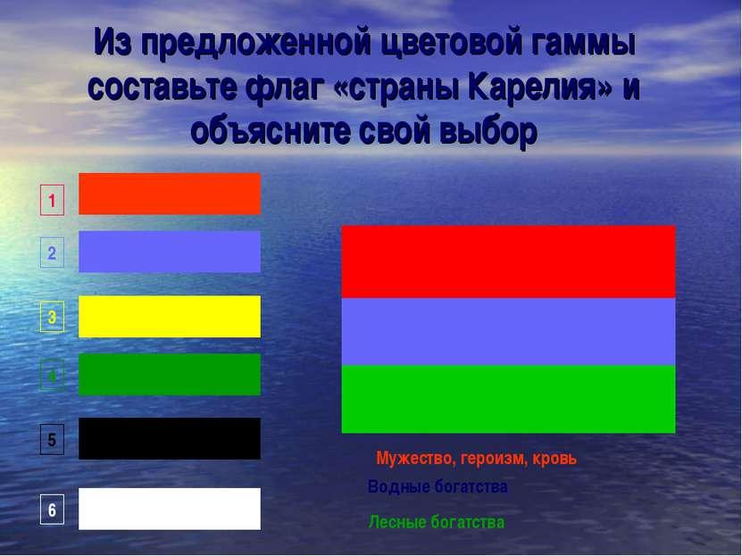 Из предложенной цветовой гаммы составьте флаг «страны Карелия» и объясните св...
