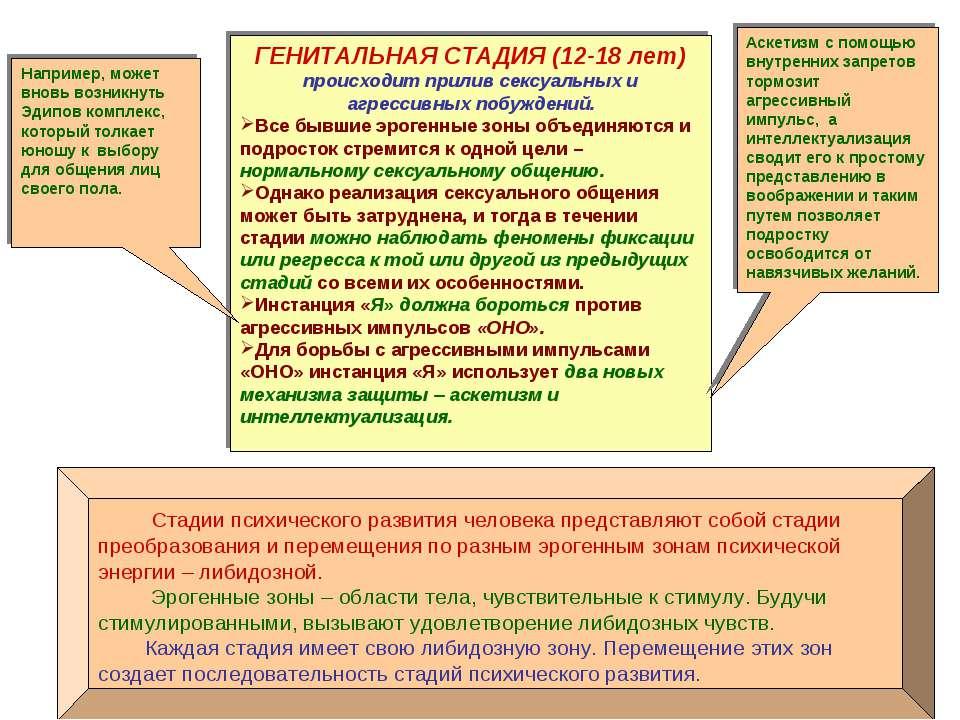 Стадии психического развития человека представляют собой стадии преобразовани...