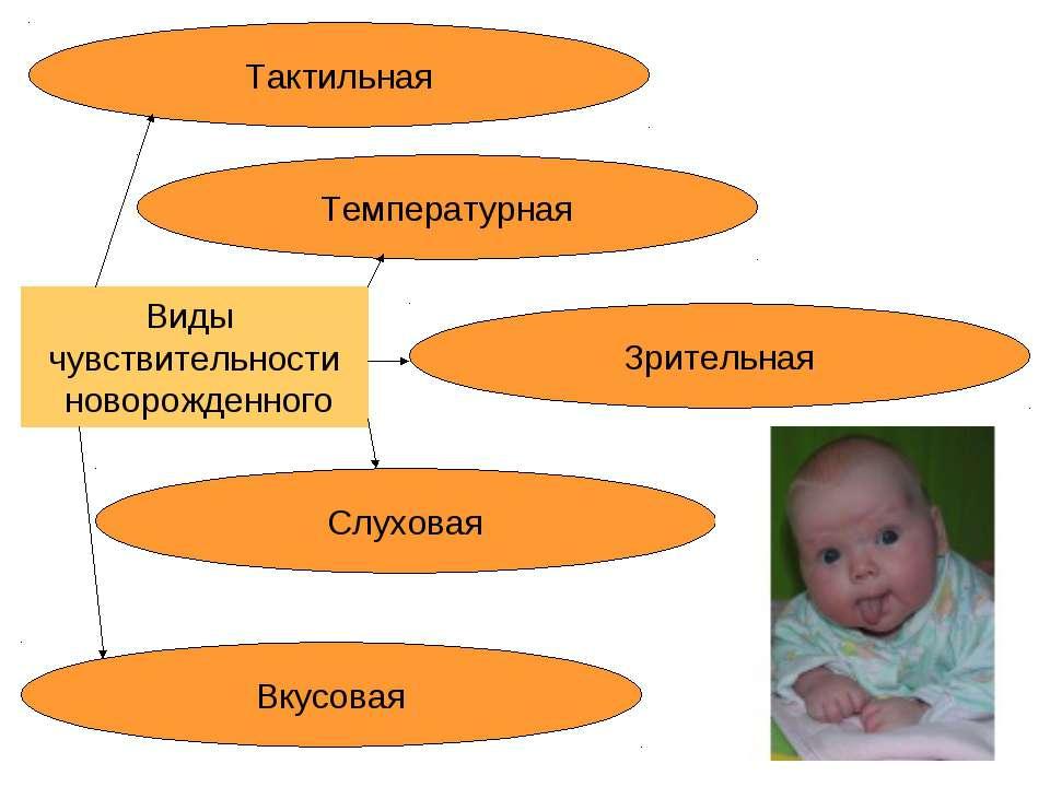 Виды чувствительности новорожденного Тактильная Зрительная Вкусовая Слуховая ...