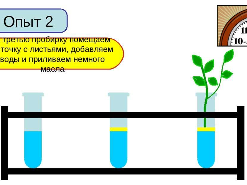 Опыт 2 В первую пробирку добавим немного воды Во вторую пробирку добавим воды...
