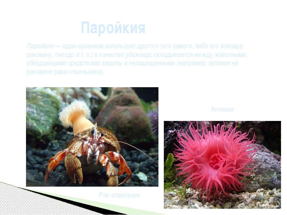 Паройкия— один организм использует другого (его самого, либо его жилище: рак...