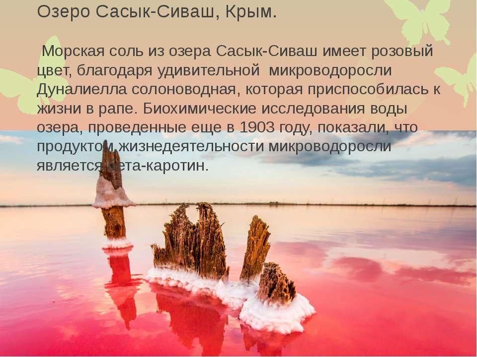 Озеро Сасык-Сиваш, Крым. Морская соль из озера Сасык-Сиваш имеет розовый цвет...