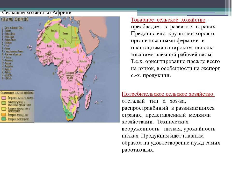 Сельское хозяйство Африки Товарное сельское хозяйство – преобладает в развиты...