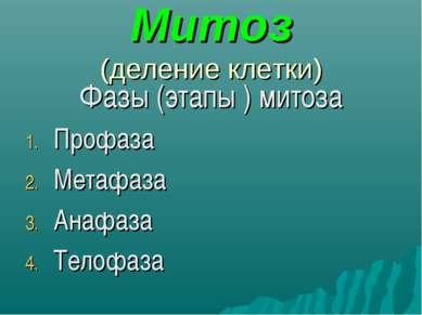 Митоз (деление клетки) Фазы (этапы ) митоза Профаза Метафаза Анафаза Телофаза