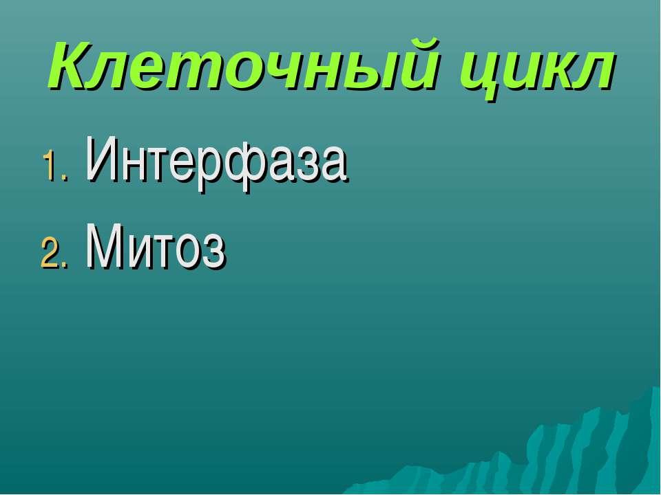 Клеточный цикл Интерфаза Митоз