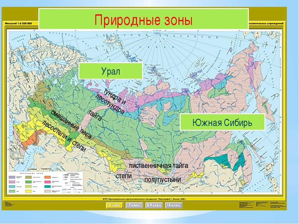 Природные зоны Урал Южная Сибирь тундра и лесотундра тайга смешанные леса лес...