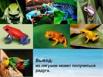 Вывод: из лягушек может получиться радуга.
