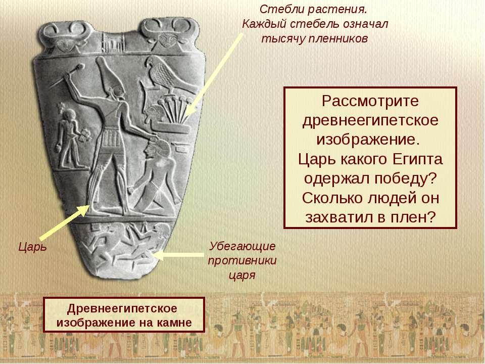 Древнеегипетское изображение на камне Стебли растения. Каждый стебель означал...