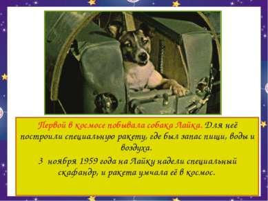 Первой в космосе побывала собака Лайка. Для неё построили специальную ракету,...