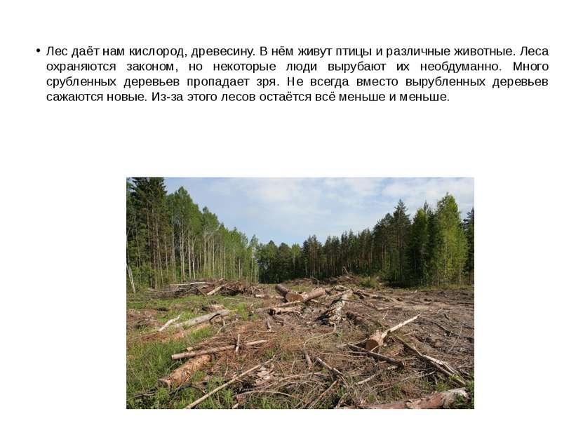 Лес даёт нам кислород, древесину. В нём живут птицы и различные животные. Лес...
