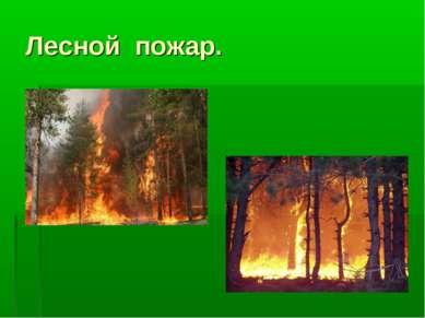 Лесной пожар.