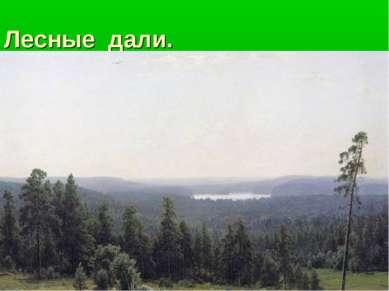 Лесные дали.